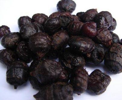 Nakládaný partikl - Fermentovaný černý tygří ořech 2,5kg
