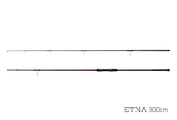 e61dd005c3177c3f27f639e237bef208 570x388 - Delphin ETNA II Next generation