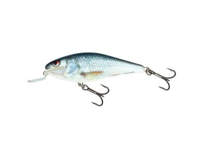 salmo wobler executor shallow runner real dace 1 405x330 - Mikbaits SK