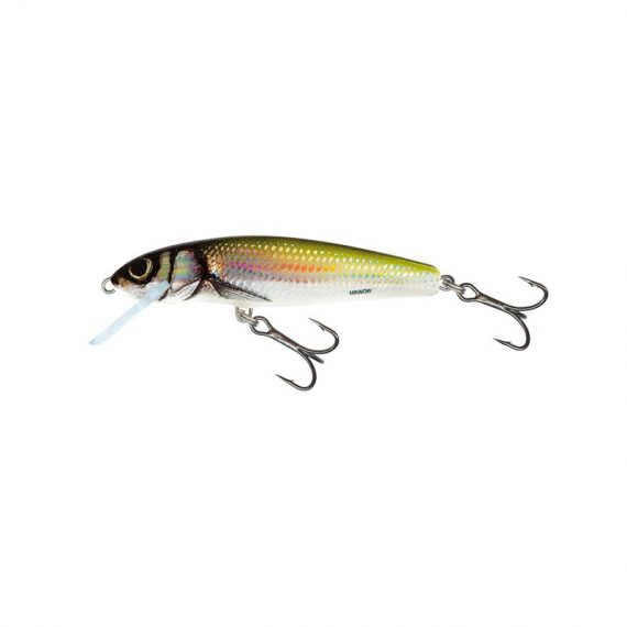 salmo wobler minnow floating holo bleak 1 1 570x570 - Salmo Wobler Minnow Floating Holo Bleak 7cm 6g plávajúci