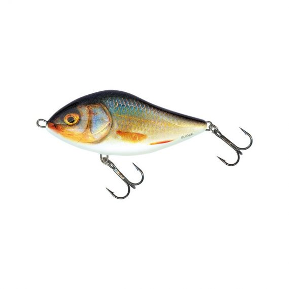 salmo wobler slider floating real roach 1 1 570x570 - Salmo Wobler Slider Floating Real Roach 10cm 36g