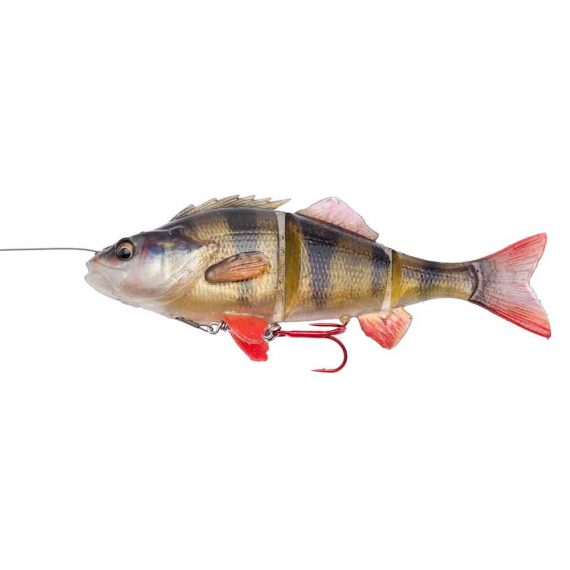 57423 23cm 145g SS 01 Perch 570x570 - Savage Gear 4D Line Thru perch 17cm SS 63g Perch